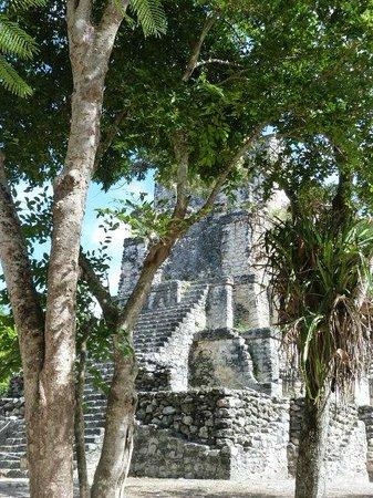 Manzano's Expeditions : El castillo
