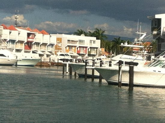Aquarius Vacation Club: Marina Next to Resort what a site to see