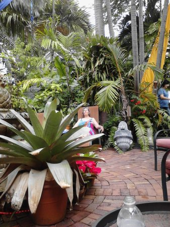 The Mermaid & The Alligator: Wonderful garden area for relaxing in sun or shade as you prefer.