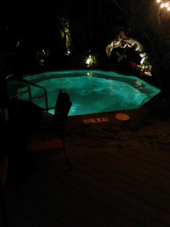 "The Mermaid & The Alligator: The pool at night. Very nice, commes up to my neck standing flatfooted (I'm 6'2"")."