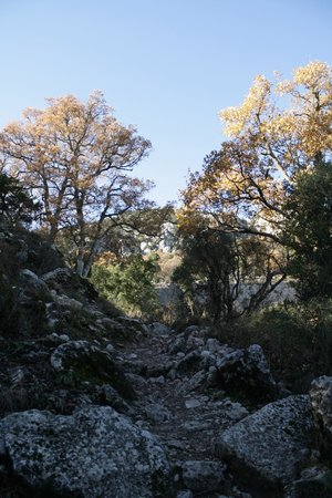 Termessos : on the way up