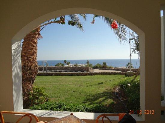 Domina Coral Bay Oasis: vista dalla terrazza della mia camera
