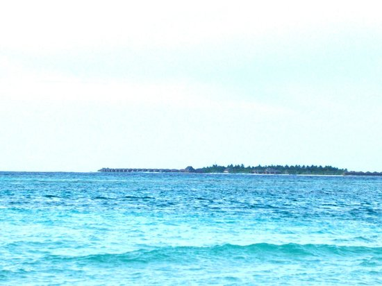 Summer Villa Guest House: Beach of Maafushi