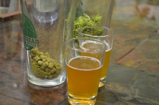 Fiddlehead Brewing Company: Real hops vs. Pellets