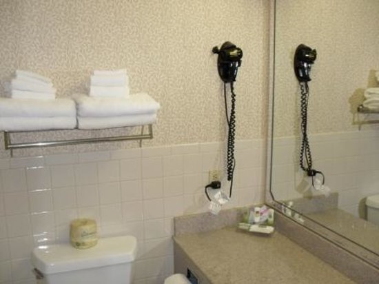 Holiday Inn Express & Suites Wyomissing: Bathroom
