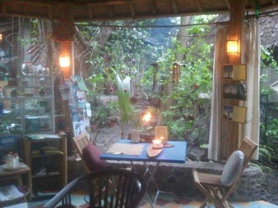 Aiona Garden of Health: Aiona (lovely restoran)