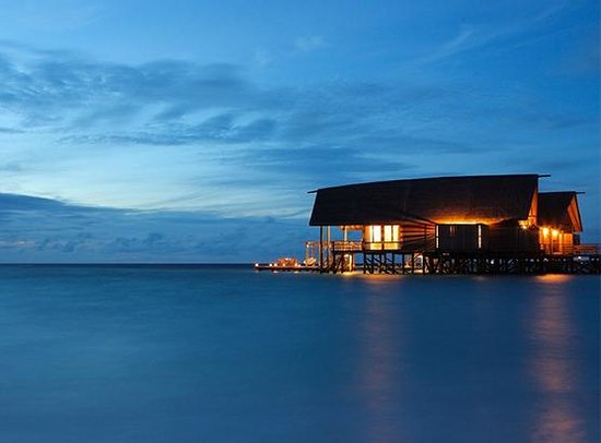 COMO Cocoa Island, The Maldives: Cocoa Island by COMO