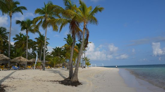 Catalonia Bavaro Beach, Casino & Golf Resort: La plage