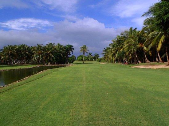 Catalonia Bavaro Beach, Casino & Golf Resort: Le golf de 9 trous