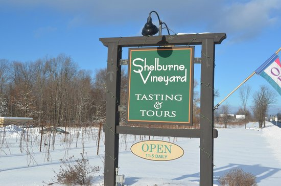 Shelburne Vineyard 이미지