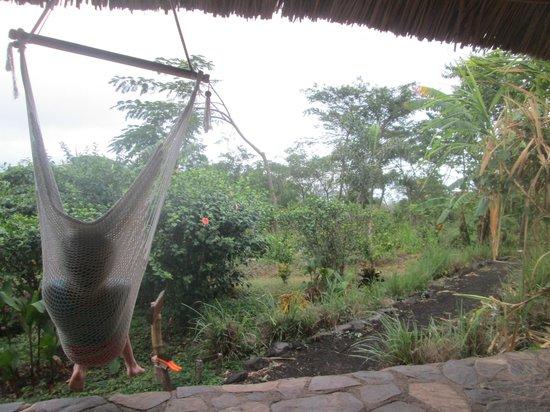 Totoco Eco-Lodge: Tonatiu.