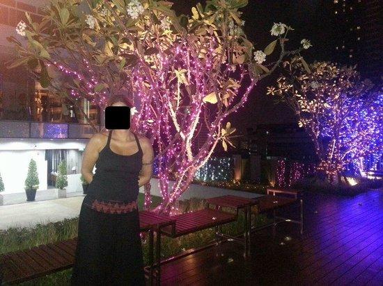 Outside restaurant, 7.th floor