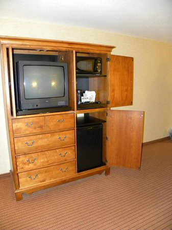 Olympic Lodge: TV, microwave, fridge