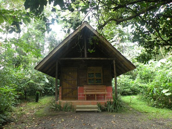 Arenal Oasis Eco Lodge & Wildlife Refuge: Notre chalet