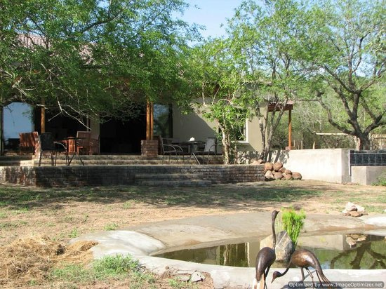 Turaco Lodge: view from the waterhole