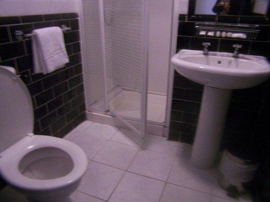 Oliver St. John Gogarty's Hostel: Two bathrooms