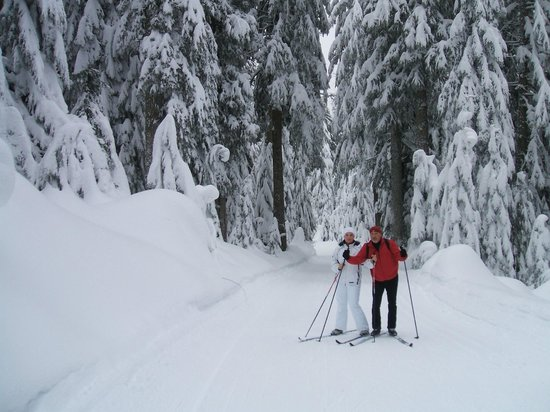 Oceanside Retreat : Skiing near Oceanside B&B and SPA