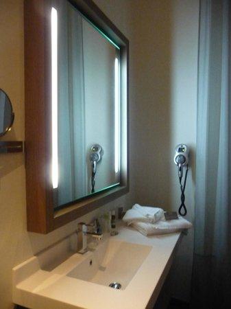Hotel François Premier : Salle d'eau