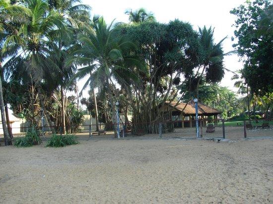 Hotel Hibiscus Beach: Вид со стороны пляжа
