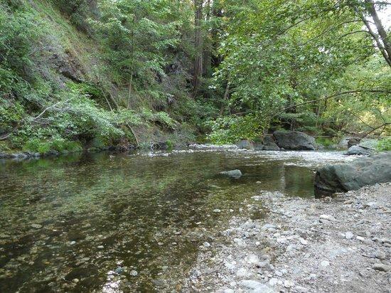 Glen Oaks Big Sur: River close to the cabins