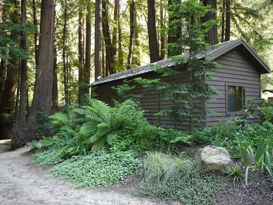 Glen Oaks Big Sur: Little Sur cabin