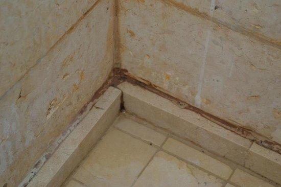 Radisson Blu Tala Bay Resort, Aqaba: состояние ванной комнаты