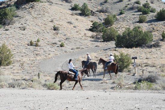 Broken Saddle Riding Company: Heading up the trail