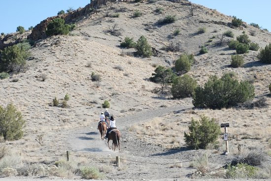 Broken Saddle Riding Company: Starting out