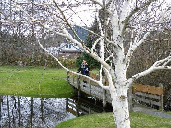 Outlook Inn on Orcas Island: Pond and bridge behind hotel