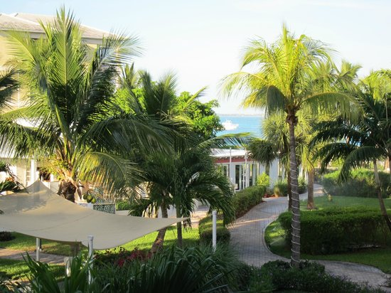 Alexandra Resort: Room view
