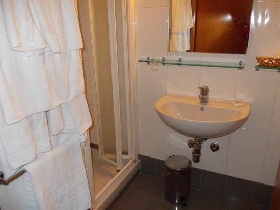 Hotel Ideale: il bagno con phon/acqua calda in doccia/cambio asciugamani