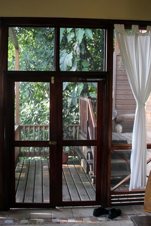 Ian Anderson's Caves Branch Jungle Lodge : Screened door to living room