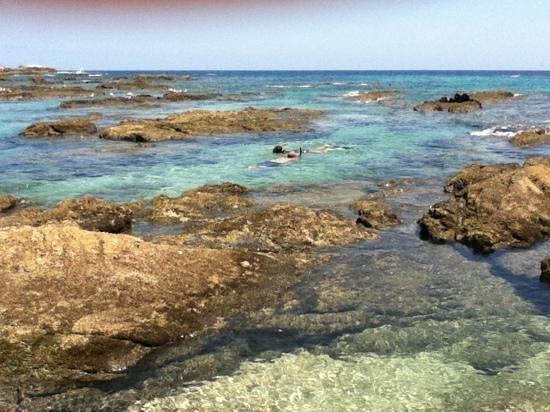 Chileno Beach: snorkel'n@cabo