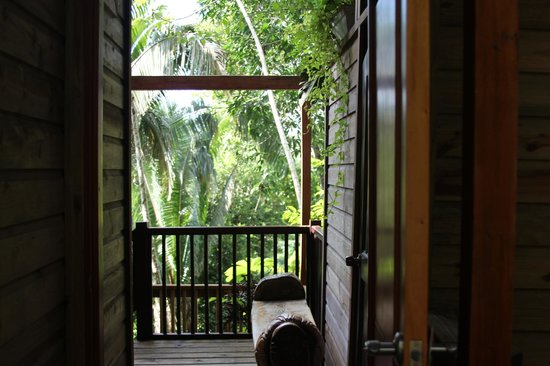 Ian Anderson's Caves Branch Jungle Lodge: Entering your tree house, outside!