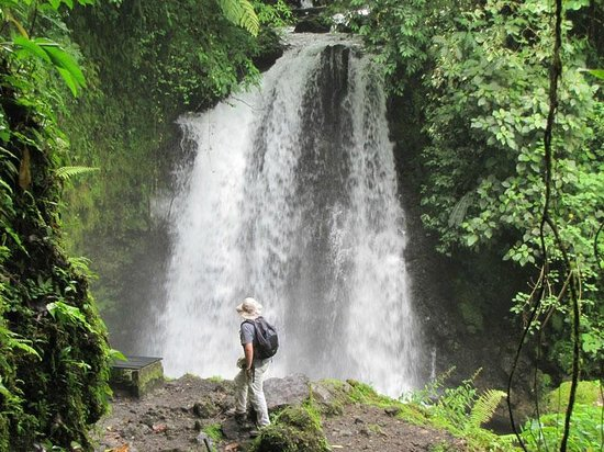 Arenal Observatory Lodge & Spa: Waterfall at Arenal Observatory Lodge