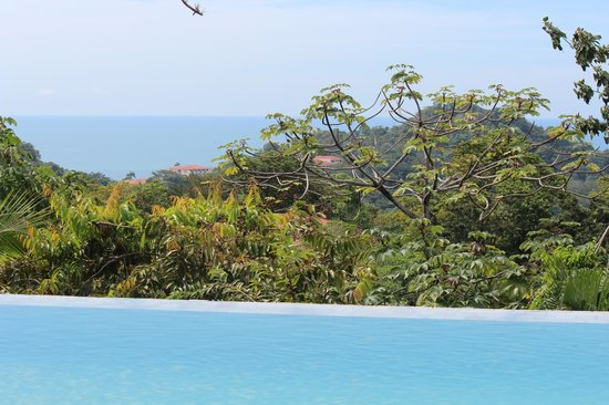 لا ماريبوسا هوتل: View from pool 