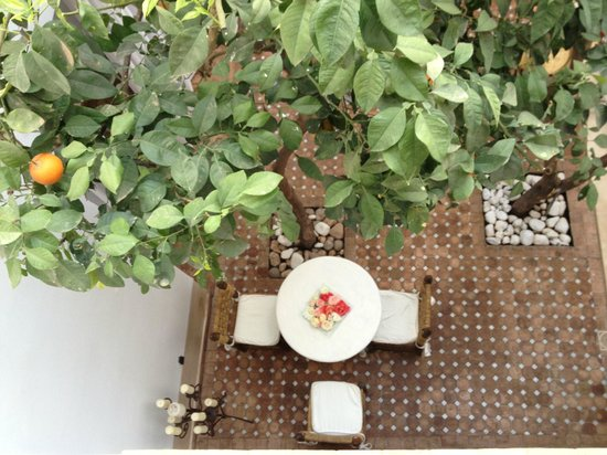 Riad les Orangers d'Alilia Marrakech: Cours