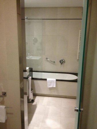 Andalucia Center Hotel: baño