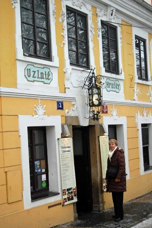 U Zlate Hrusky Restaurant: Exterior of restaurant