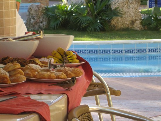 Be Live Experience Las Morlas: late breakfast at poolbar