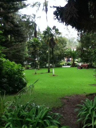 Hacienda Pinsaqui: Jardines