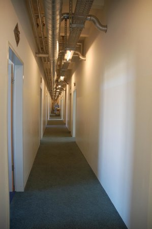 Hotel Transit Loft: Long hallways