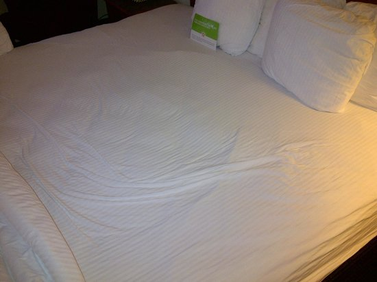 Motel 6 Jacksonville: What appears to be body imprint on used sheets