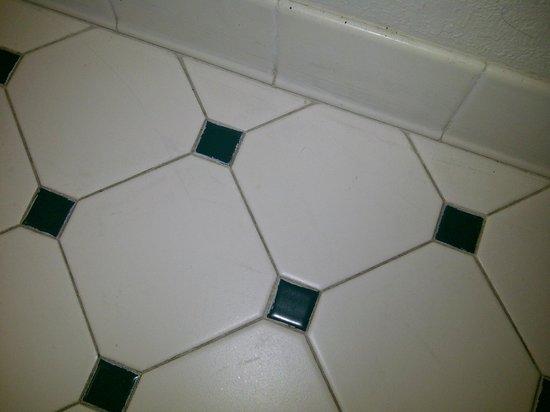 Motel 6 Jacksonville : Dirty bathroom floor