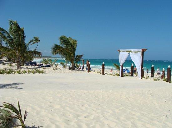 Occidental Caribe: espace mariage sur la plage deu site 