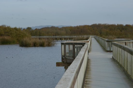 Guadalupe, Kalifornien: Boardwalk over lake
