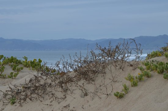 Oso Flaco Lake: Sand dunes at end of boardwalk