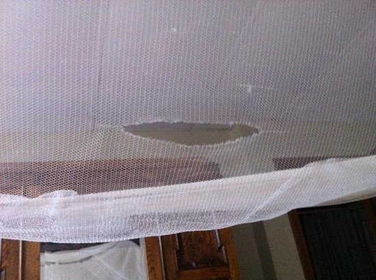 Hanover House: torn mosquito net over old bed