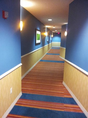 Hotel Indigo San Antonio Riverwalk: hallways