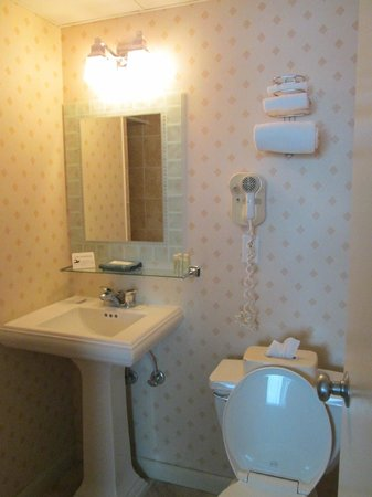 Palm Pavilion Inn: the bathroom. Small but immaculate!